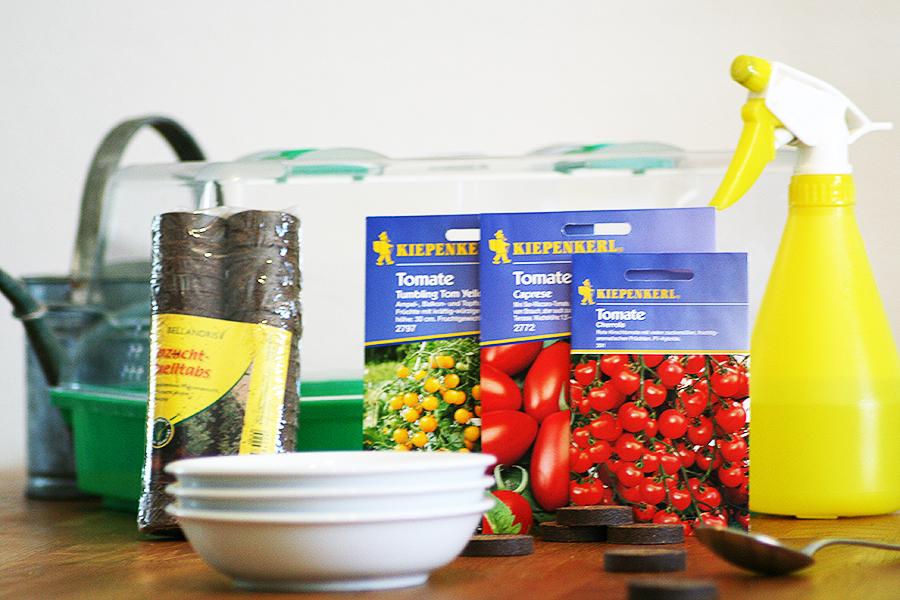 tomaten-säen