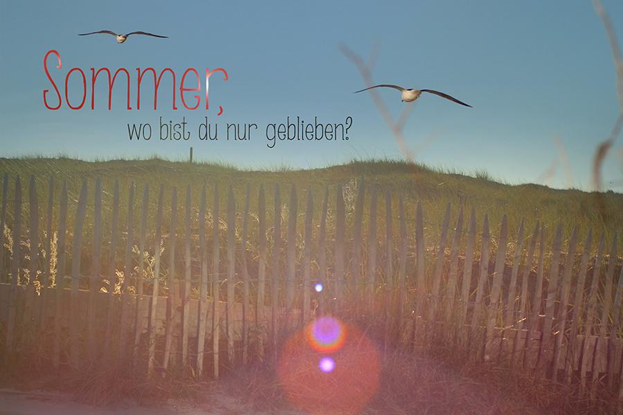 Sommer-wo-bist-du-nur