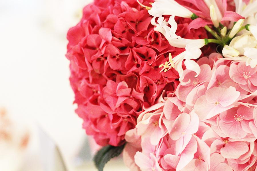 Frühling Blumen Wochenrückblick