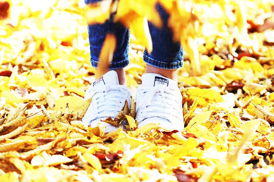 Herbstspaziergang-3