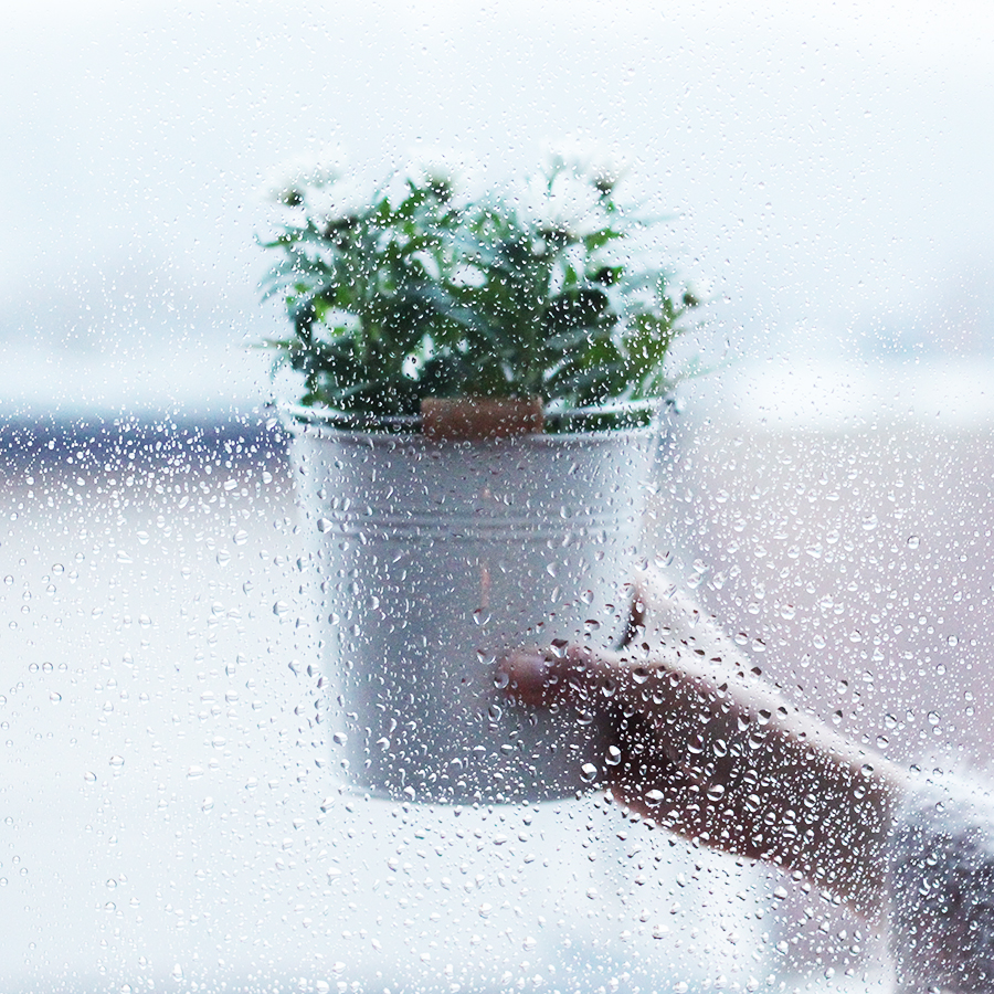 Sonntage-sind-Regentage