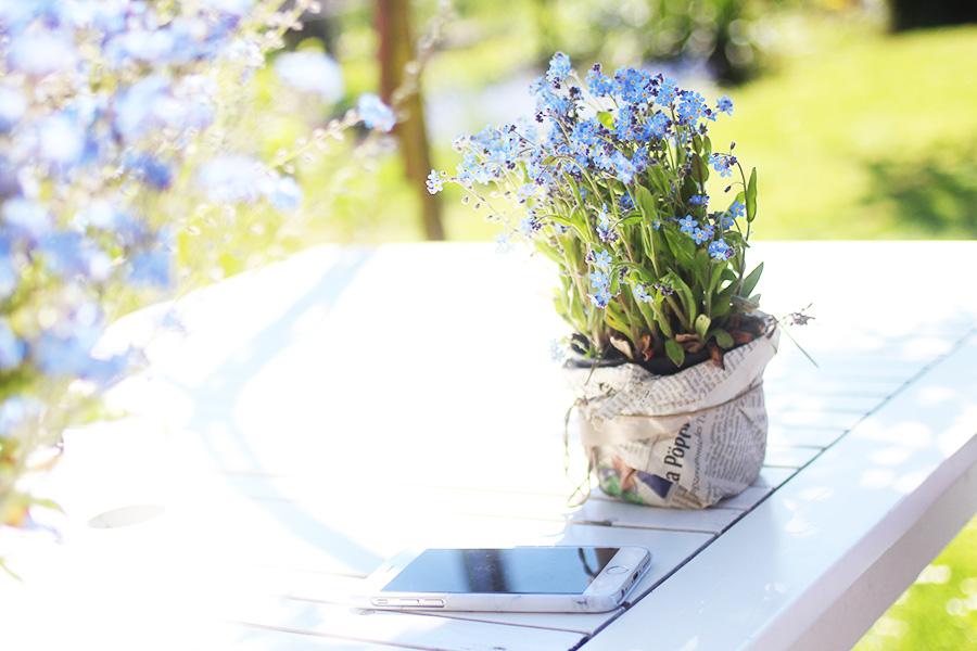 Sonntage-sind-Gartengedanken-2