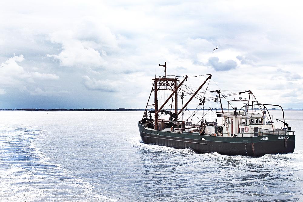 Andrea-Norddeich-Fischkutter