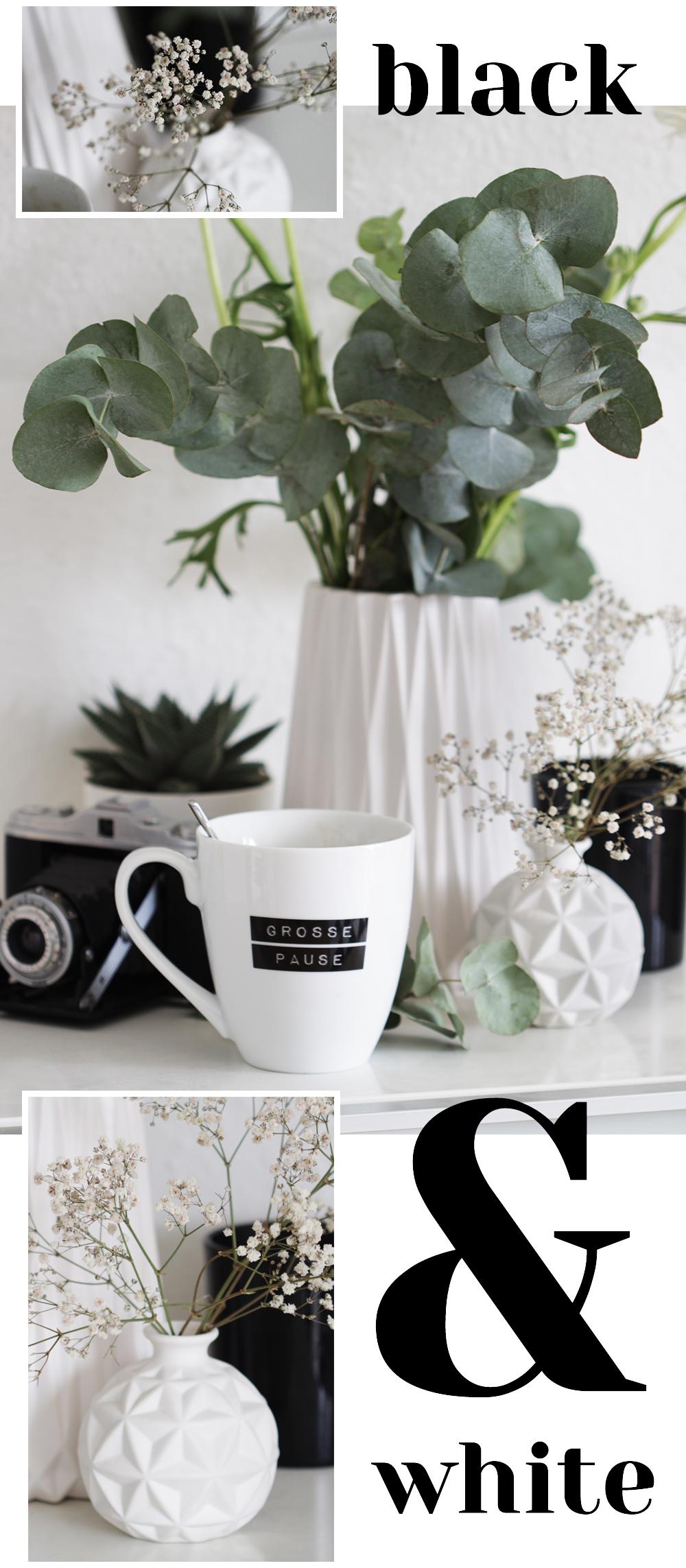 schwarzweiße Dekoration und Designelemente