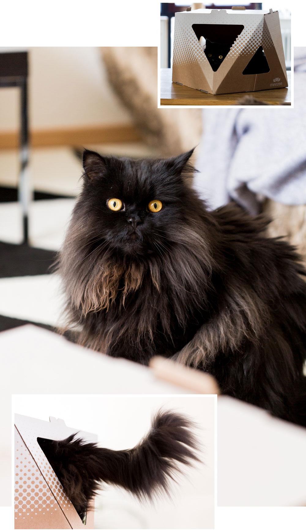 wohnen mit katzen kratzb ume katzenm bel und. Black Bedroom Furniture Sets. Home Design Ideas