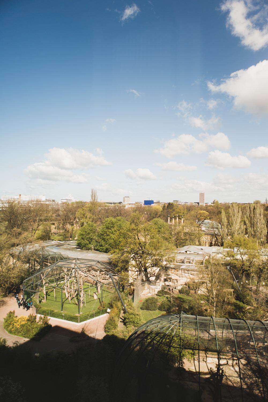 25hours Hotel Bikini Berlin Aussicht Berliner Zoo