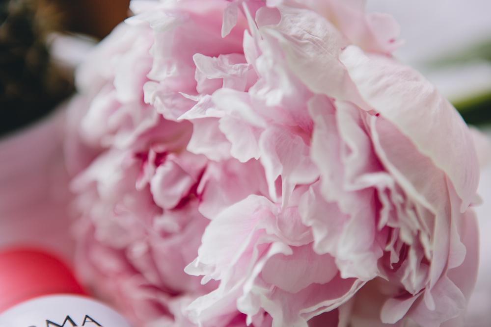 Rosgeold and Marble liebt Pfingstrosen, Pink Peonies