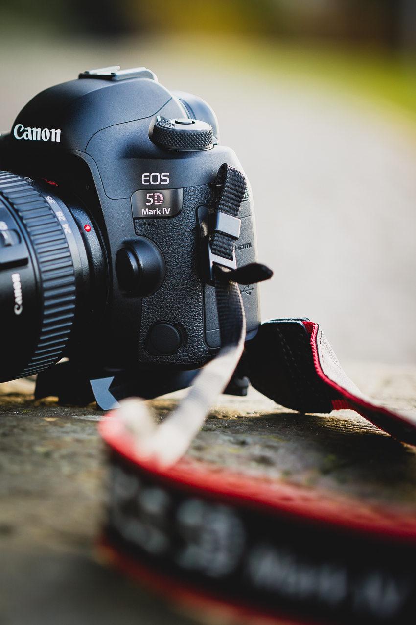 Canon EOS 5D Mark IV im Vergleich zum Vorgänger 5D Mark III