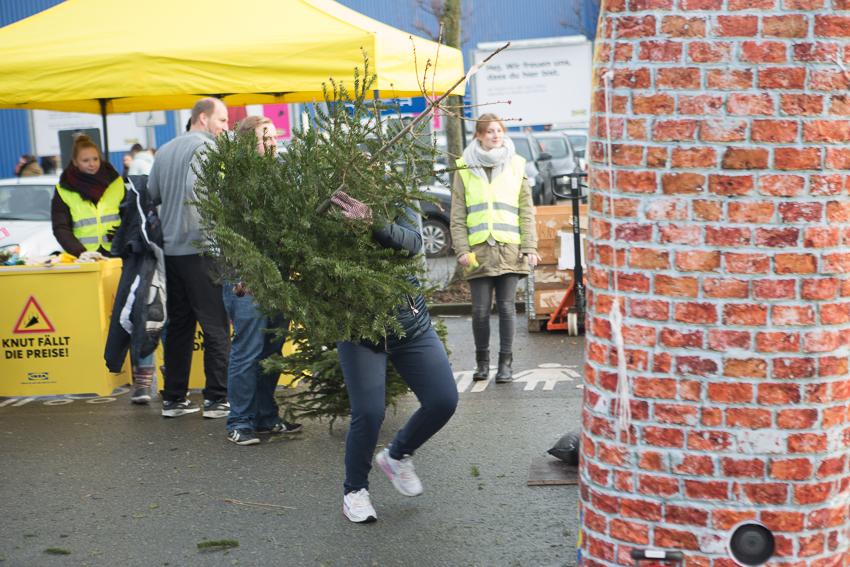 Knut Weihnachtsbaum Weitwurf bei IKEA Bielefeld