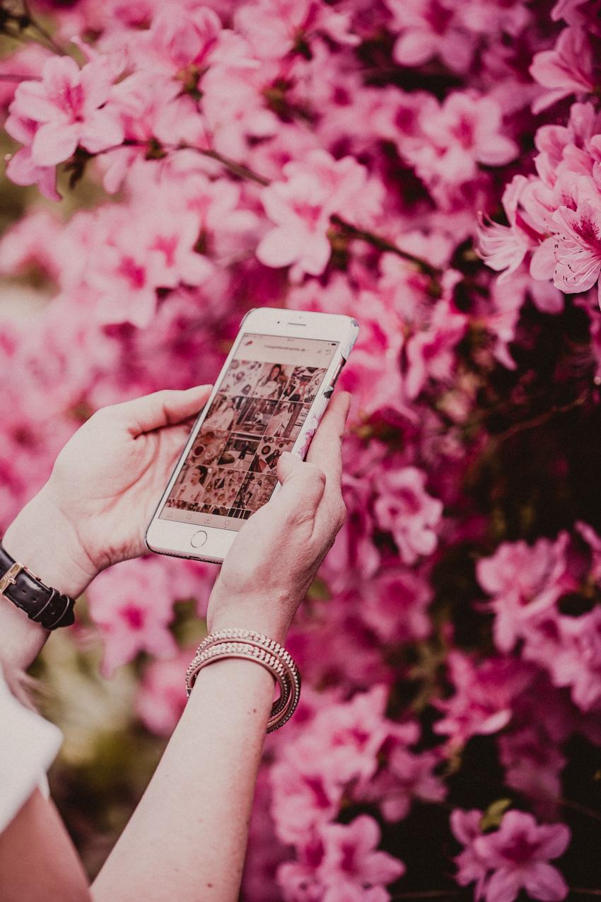 Instagram Tutorial: so bekommt man mehr Follower auf Instagram